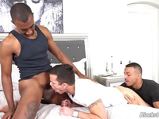 Aroused gay lovers share their tendency for dick in a wild trio